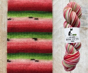 Hand-Dyed Watermelon Bis-Sock Yarn Giveaway