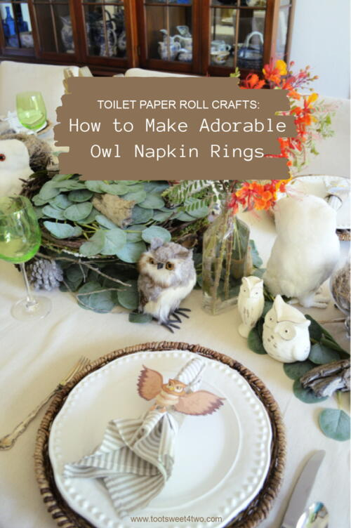 Toilet Paper Roll Crafts:  How To Make Adorable Owl Napkin Rings