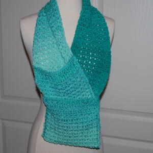 Ombre Pocket Scarf