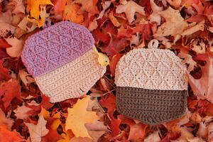 Autumn Acorn Hot Pads