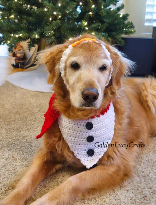 Crochet Snowman Christmas Dog Bandana And Headband