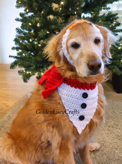 Snowman Christmas Dog Bandana And Headband