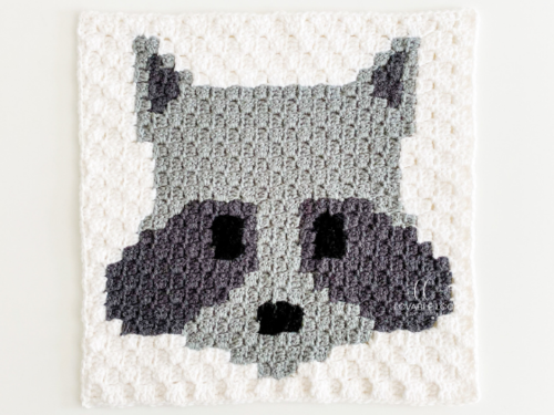 C2c Raccoon Square