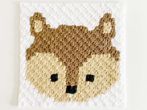 C2c Squirrel